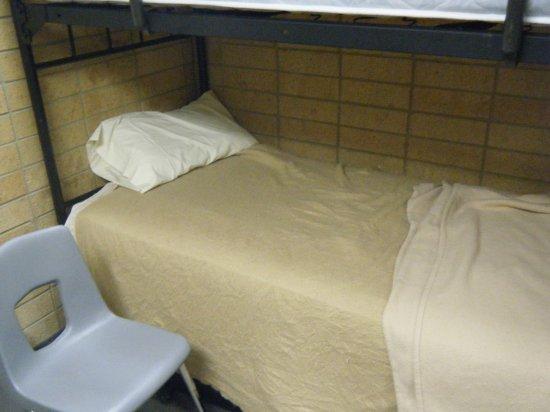 Elder Hale's MTC Bed