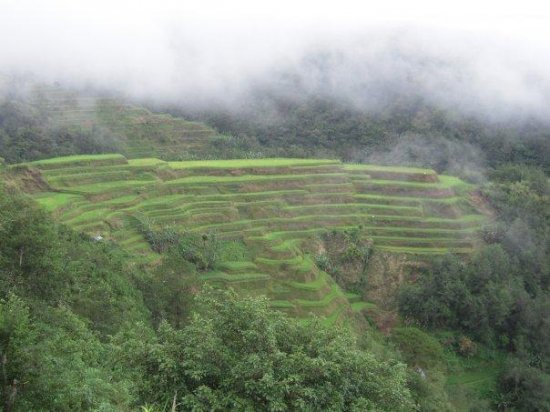 Rice Terraces over 2,000 years old!